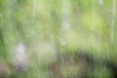 Дождь окна Стоковые Изображения RF