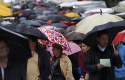 Дождь 012 Стоковая Фотография RF