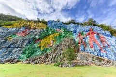 Доисторическая настенная роспись - Vinales, Куба Стоковая Фотография RF