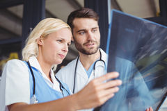 Доктора анализируя рентгеновский снимок Стоковая Фотография