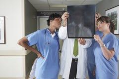 Доктора и медсестры смотря рентгеновский снимок в больнице Стоковые Фото