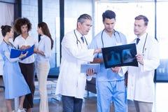Доктора рассматривая рентгеновский снимок в больнице Стоковая Фотография
