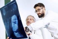 Доктора рассматривая рентгеновский снимок тела ` s женщины Стоковое Изображение