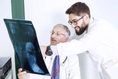 Доктора рассматривая рентгеновский снимок тела ` s женщины Стоковые Фотографии RF