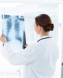 Доктор анализируя рентгеновский снимок Стоковые Фотографии RF