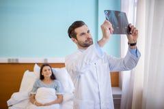 Доктор держа изображение рентгеновского снимка стоковые изображения rf