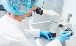 Доктор или ученый работая на эксперименте по biotech в лаборатории Стоковое Фото