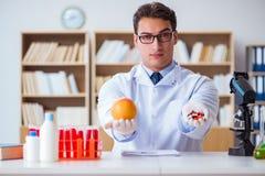 Доктор предлагая выбор между здоровой и витаминами Стоковое Фото