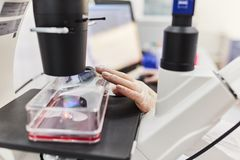 Доктор работая с микроскопом Ученый проводит исследование стоковые фотографии rf