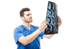 Доктор рассматривая рентгеновские снимки в студии Стоковое Фото