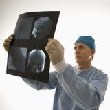 доктор смотря луч x Стоковая Фотография