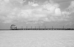 Док пляжа черно-белый Стоковые Фото