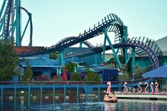 Док шлюпки фламинго затвора, с предпосылкой американской горкы Mako на тематическом парке Seaworld стоковое фото rf