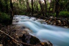Долгая выдержка быстрого идущего потока Стоковое Изображение