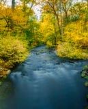 Долгая выдержка реки бежать через красочную сцену осени в сельской се стоковые изображения rf