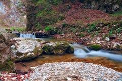 Долгая выдержка реки Начало весны стоковые фотографии rf