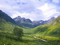 Долина Архангела в пропуске Аляске ` s Hatcher стоковая фотография rf