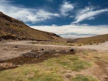 Долина боливийских гористых местностей зеленая Стоковые Изображения RF