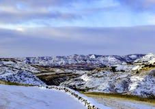 Долина в неплодородных почвах Северной Дакоте стоковое фото