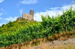 Долина Германия Мозель: Взгляд к виноградникам и руины Landshut рокируют около Bernkastel-Kues, Германии Стоковые Изображения