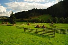 долина горы ландшафта Стоковая Фотография RF