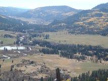Долина горы - яркие желтые деревья Aspen осенью Стоковая Фотография RF