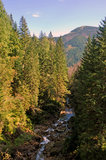 Долина горы Стоковые Изображения RF