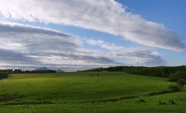 Долина горы Rhune Стоковые Изображения