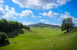 Долина и поля завальцовки стоковое фото