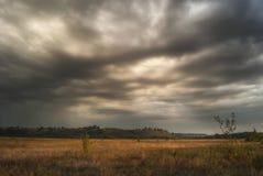 Долина и холмы в утре в августе на фоне пожелтетых трав луга стоковые изображения rf