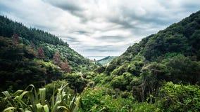 Долина к океану стоковое изображение