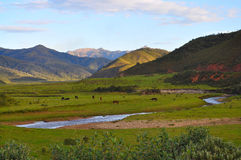 долина ландшафта Стоковое Изображение RF