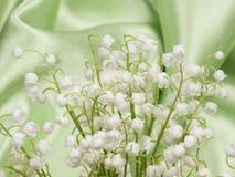 долина лилии Стоковое фото RF