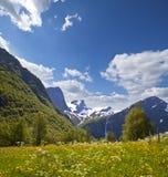 долина Норвегии горы Стоковое Фото