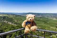 Долина ООН Wachau Dranik плюшевого медвежонка, Австрия Стоковые Фото