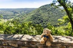 Долина ООН Wachau Dranik плюшевого медвежонка, Австрия Стоковая Фотография RF