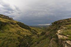 Долина открытая вверх на открытом пастбище стоковые фото