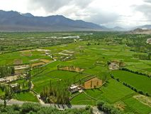 Долина от монастыря Thikse Стоковое Фото