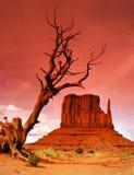 долина памятника s mitten западная Стоковые Фотографии RF