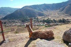 долина Перу священнейшая сценарная Стоковая Фотография