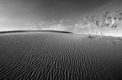 долина песка дюны смерти Стоковые Изображения RF