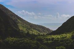 долина положения парка iao стоковые изображения rf