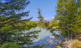 Долина реки Argut Стоковая Фотография RF