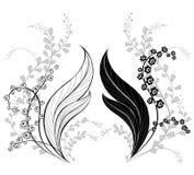 долина силуэта лилии Стоковые Изображения