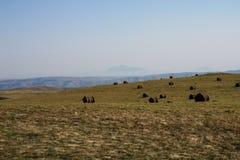Долина с стогами сена в горах Кавказа с змейчатой дорогой, Россией Стоковая Фотография