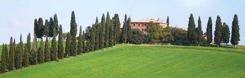 долина Тосканы зоны orcia d Италии val Стоковые Фотографии RF