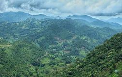 Долина Araku & x28; India& x29; стоковые изображения