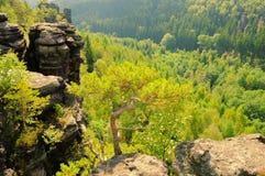 Долина Biela Стоковые Фотографии RF