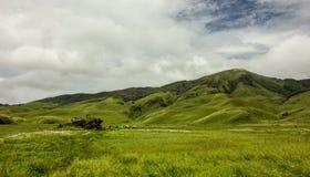 Долина Dzuko, Nagaland, Индия стоковые изображения rf