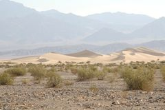 долина sanddunes смерти Стоковое Фото